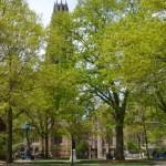 心理学系大学院への進学を考える大学生の皆さんへー学部時代をどう過ごしますか? その1