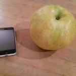 梨、大きい。梨、美味い。