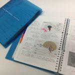 公認心理師勉強用ノート